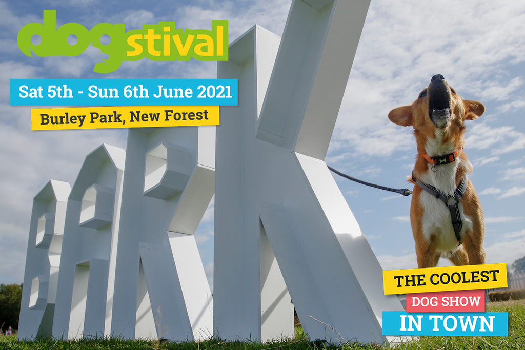 Join Charley Chau at Dogstival