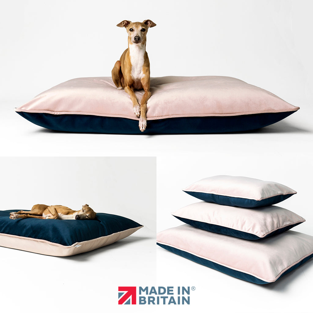 Charley Chau Day Bed Mattresses - luxe pillow style dog bed