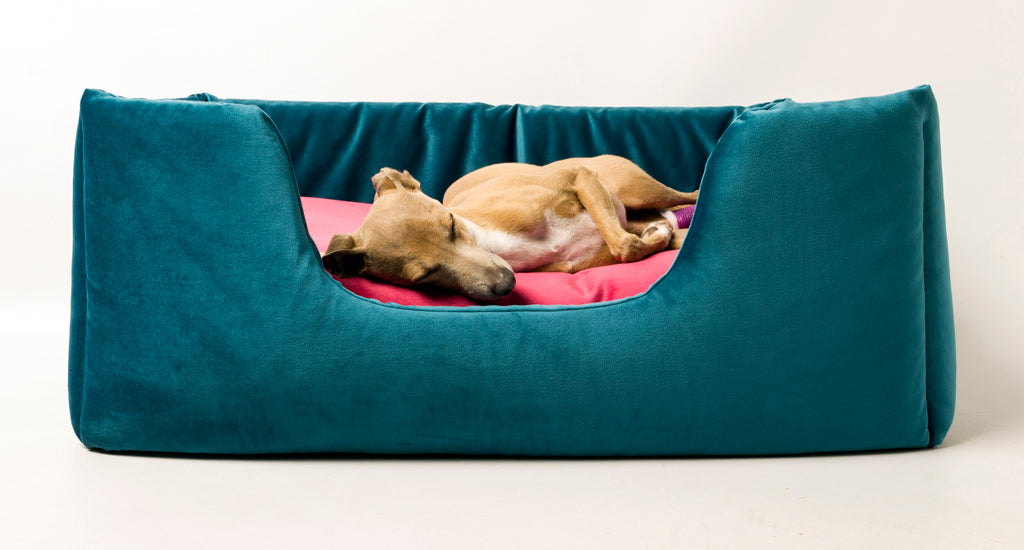 Deeply Dishy Luxury Dog Bed in Velour