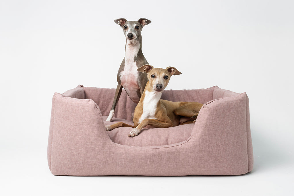 Charley Chau Deeply Dishy Dog Bed in Blush - limited edition collection