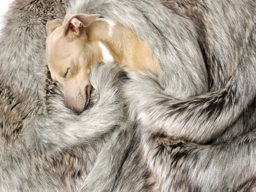 Charley Chau Faux-Fur Dog Blanket in Silver Fox