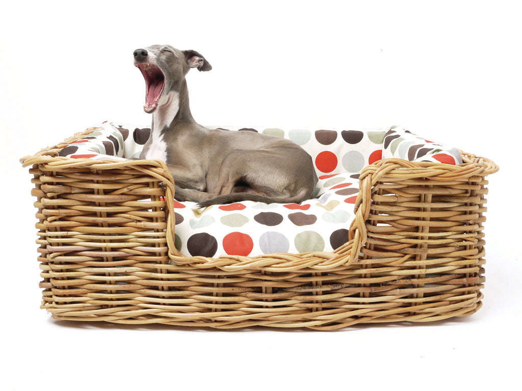 New for A/W 2014! Dressed Rattan Dog Baskets — Charley