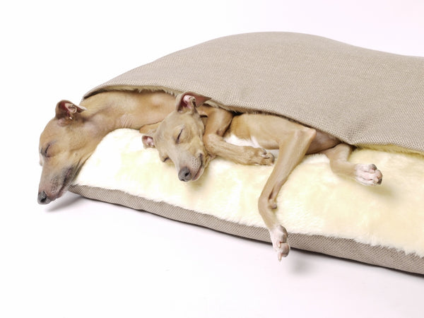 Charley Chau Luxury Dog Snuggle Bed