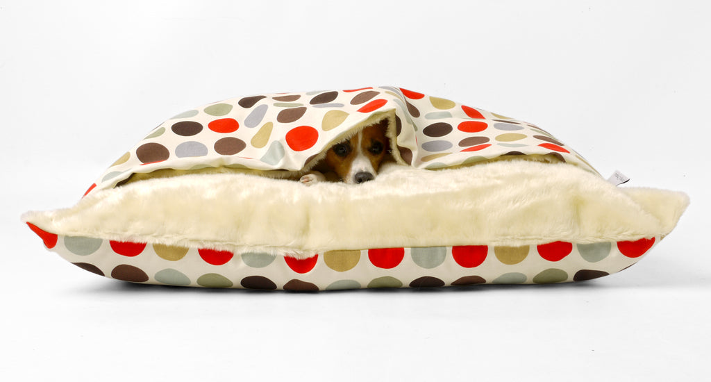 Charley Chau Snuggle Bed  / Terrier Tunnel Bed