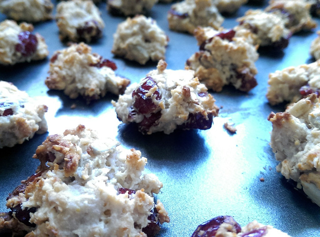 Cheese & Cranberry Granola Bites for dogs