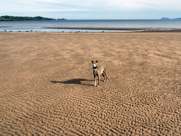 Kilchattan Bay Beach, Bute