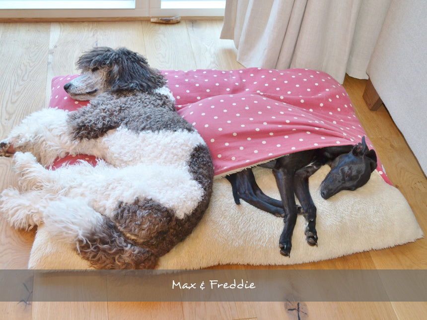 Max & Freddie sharing their Snuggle Bed in Dotty Red Raspberry