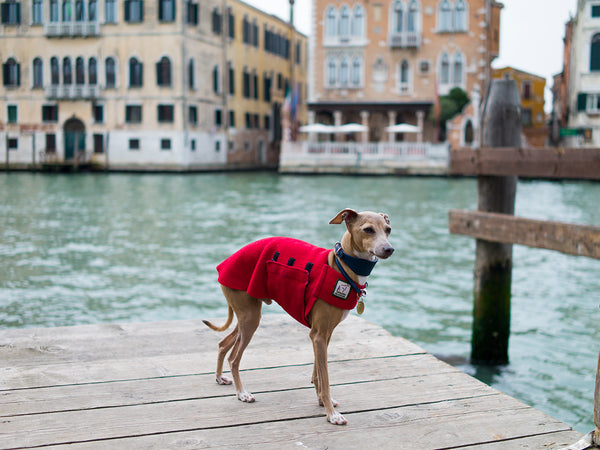 Theo in Venice