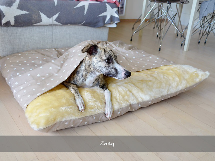 Zoey in her Snuggle Bed in Dotty Taupe