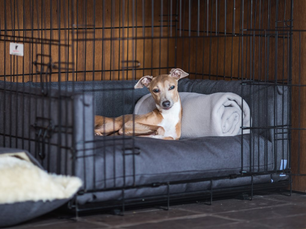 Charley Chau Dog Crate Mattress and Bed Bumpers in Weave Slate