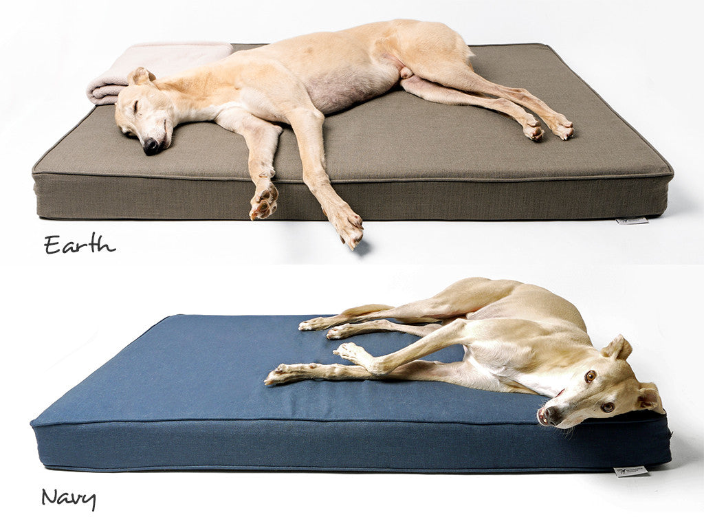 The Forever Hounds Trust Big Memory Foam Dog Bed in Earth and Navy