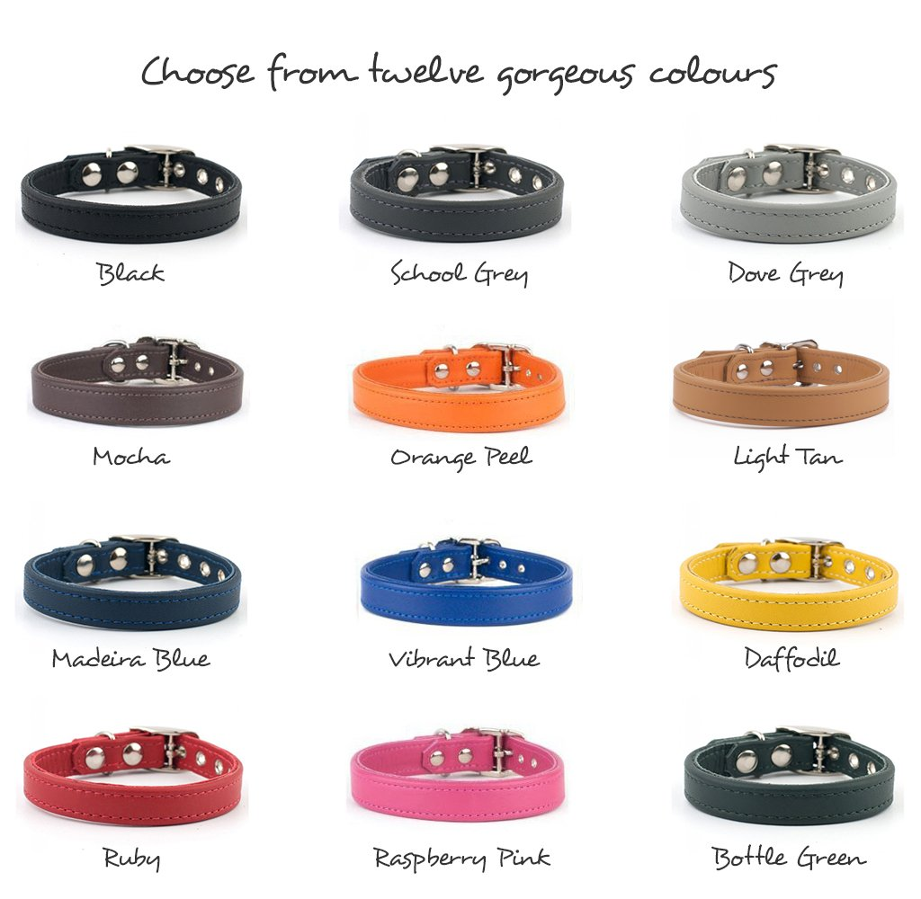 Bespoke leather dog collars & leads in twelve gorgeous colours
