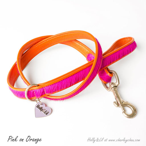 Brightside Dog Leads by Holly&Lil