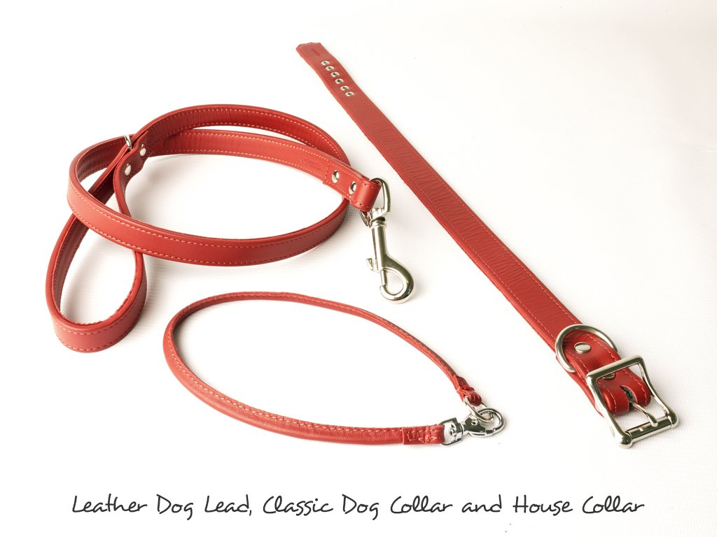 Bespoke Leather Dog Collar - Ruby - by Petiquette at Charley Chau