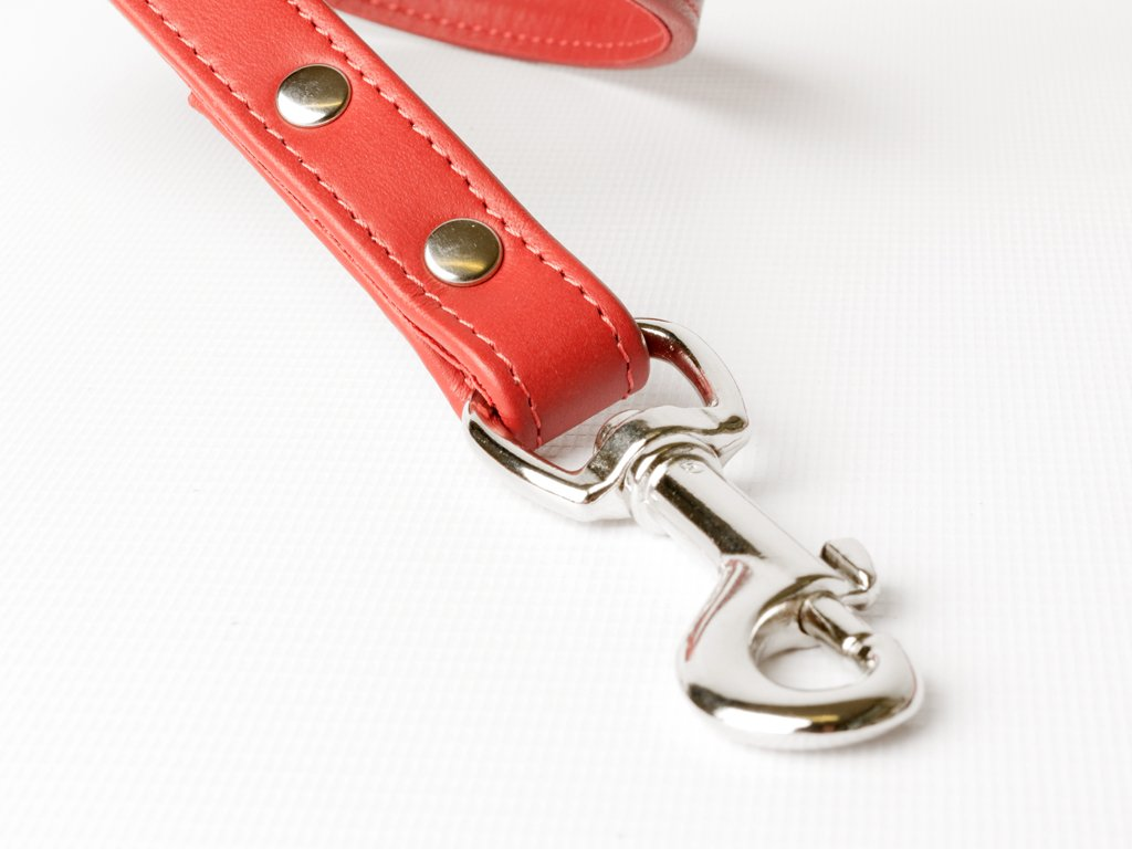 Bespoke Leather Dog Lead - shown in Ruby