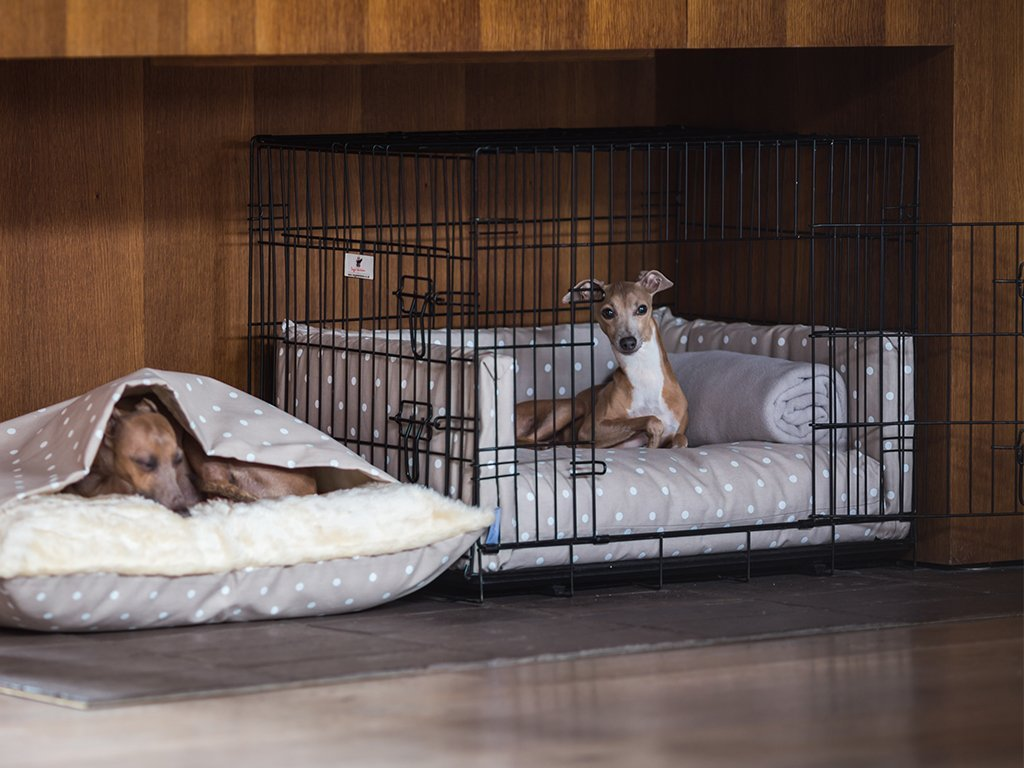 Charley Chau Dog Crate Bed and Bumper Set