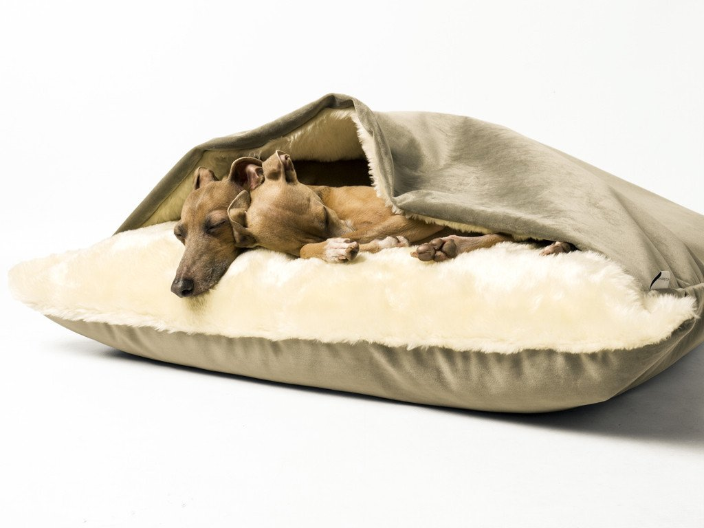 Snuggle Bed in Velour Cloud - Charley & Theo are sharing a Medium size Snuggle Bed