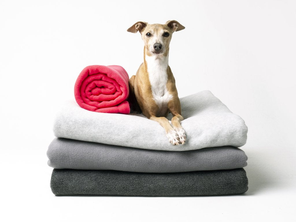 Charley Chau Luxury Double Fleece Dog Blankets
