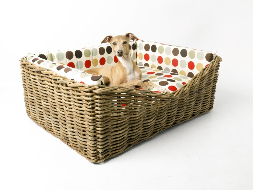 Charley Chau Dressed Greywash Rattan Dog Basket in Great Spot