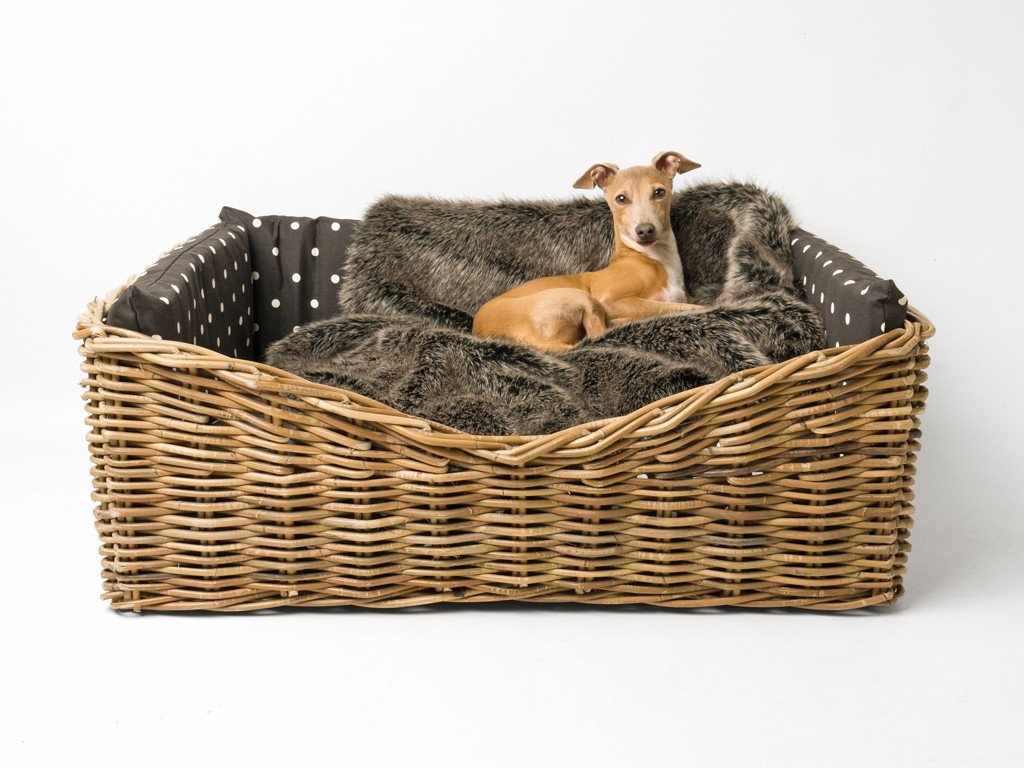 Charley Chau Dressed Greywash Rattan Dog Basket in Dotty Charcoal with Faux-Fur Blanket in Charcoal