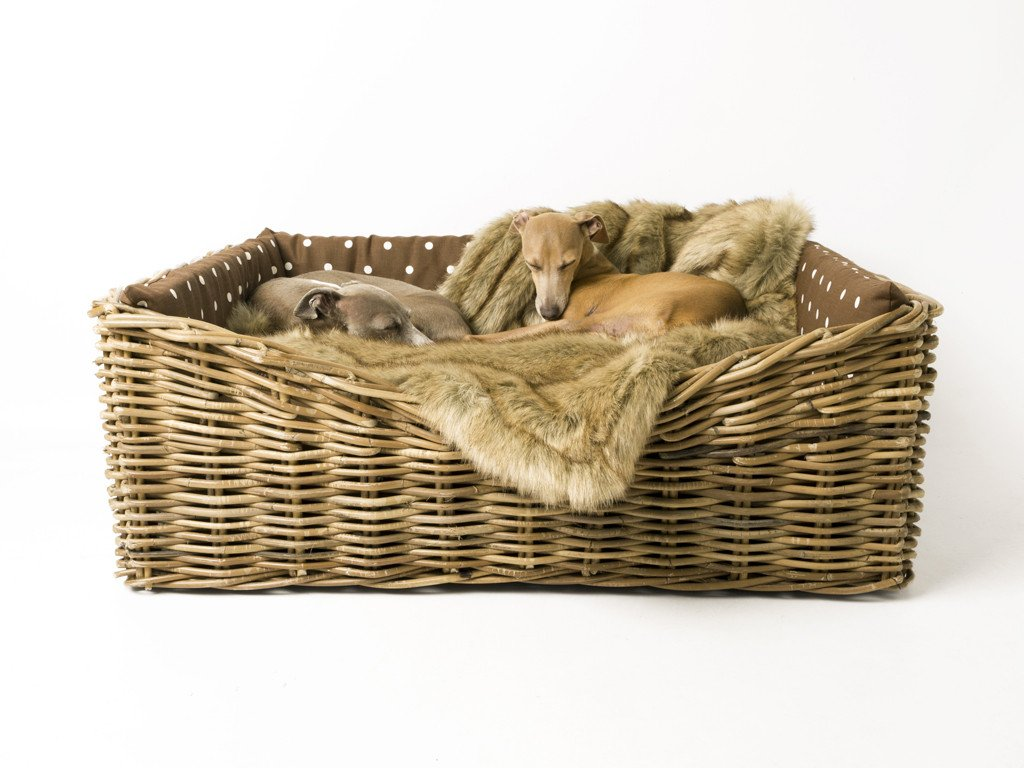 Charley Chau Dressed Greywash Rattan Dog Basket in Dotty Chocolate with Faux-Fur Blanket in Foxy