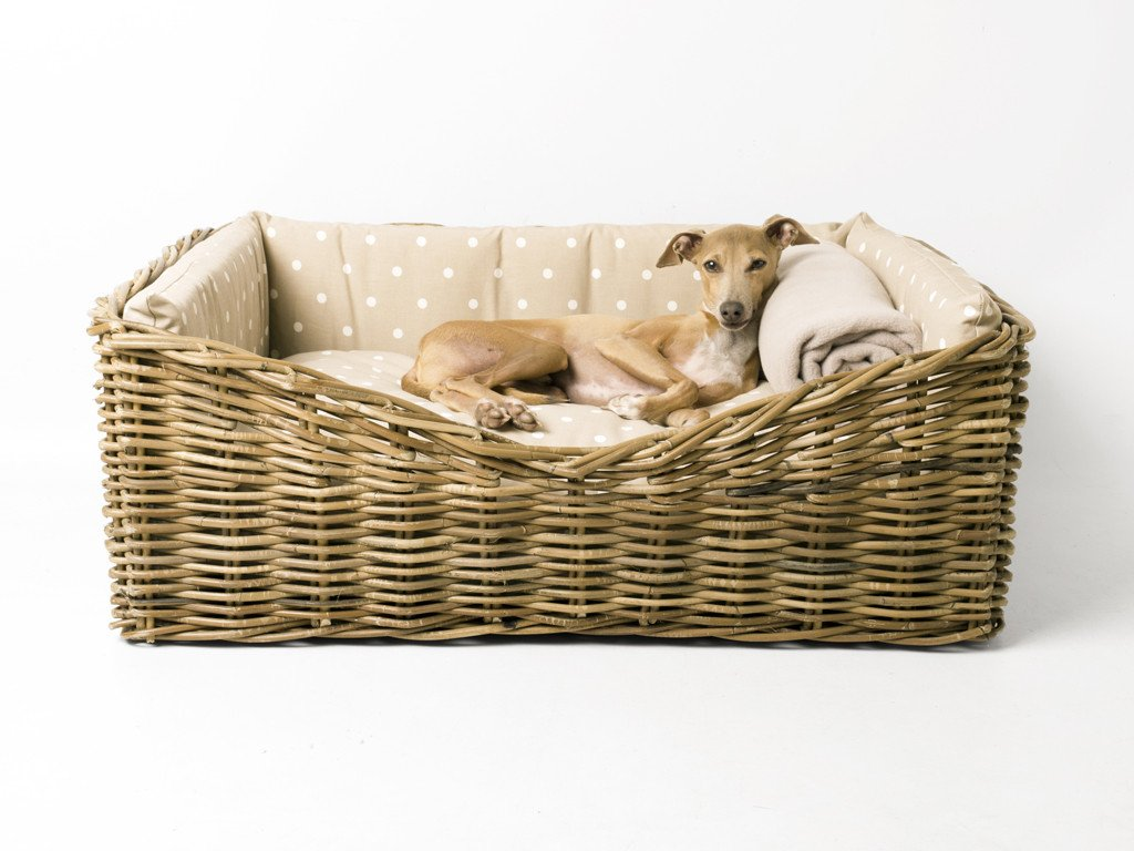 Charley Chau Dressed Greywash Rattan Dog Basket in Dotty Taupe with Double Fleece Blanket in Oyster
