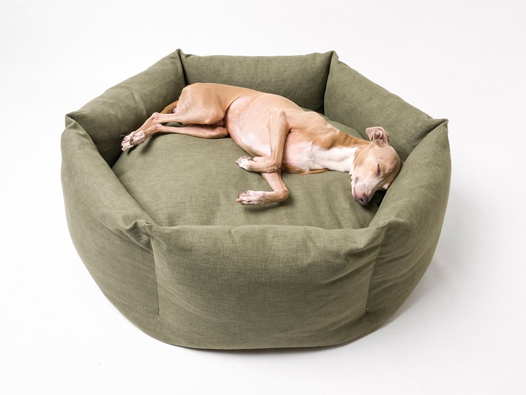 Charley Chau Ducky Donut Dog Bed in Fern