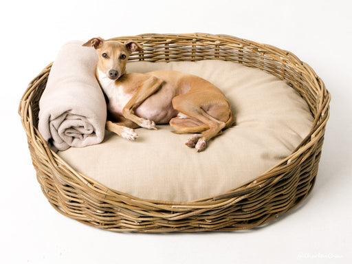 Charley Chau Oval Greywash Rattan Dog Basket & Reversible Mattress