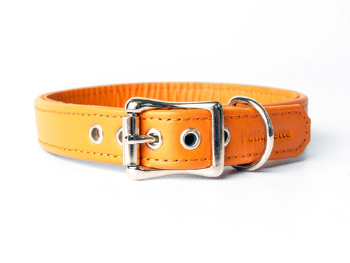 Charley Chau Bespoke Leather Puppy Dog Collar