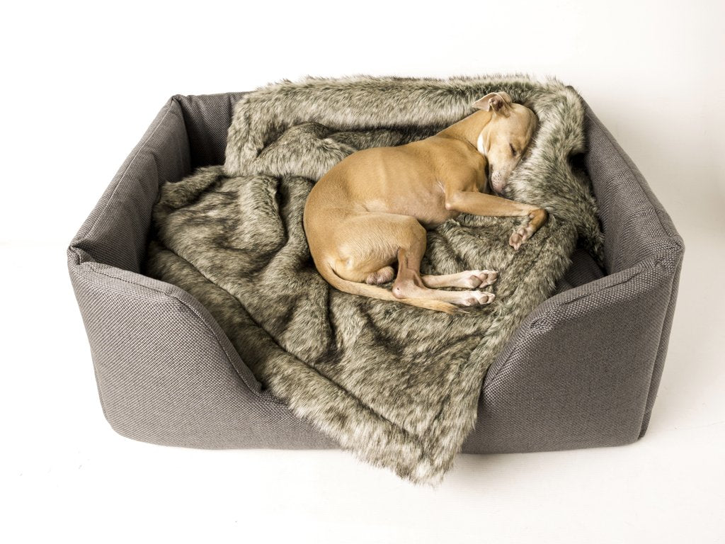 Charley Chau Faux-Fur Dog Blanket in Wolf Grey, shown here with a Deeply Dishy Dog Bed in Weave Slate
