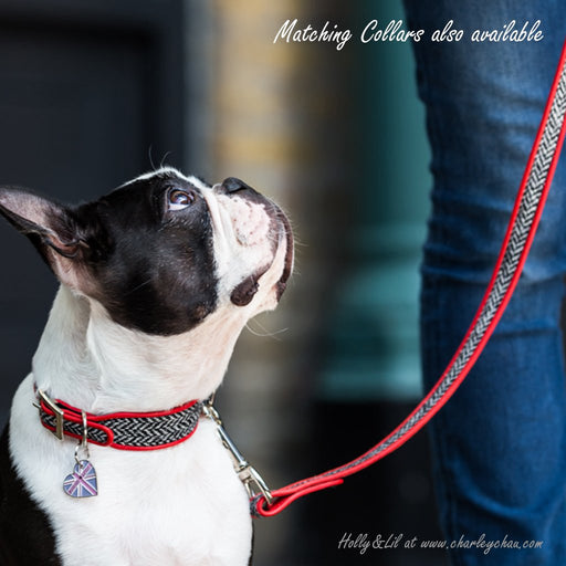 Harris Tweed Designer Dog Collar and Lead by Holly&Lil at Charley Chau