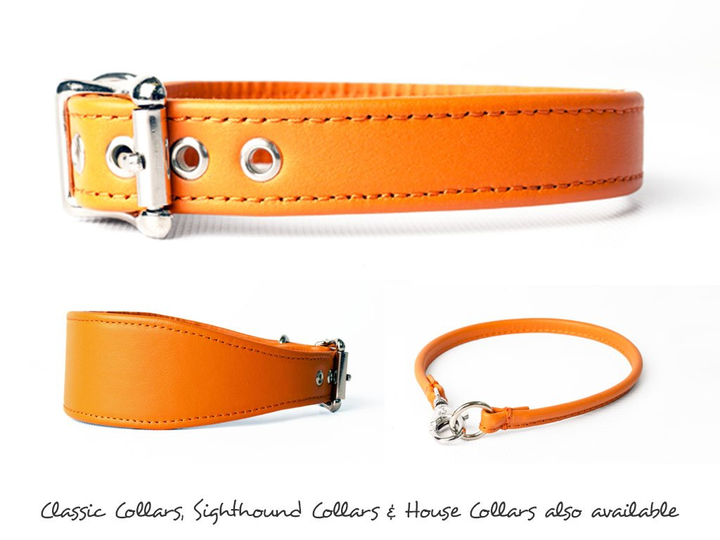Leather Dog Collars made to order