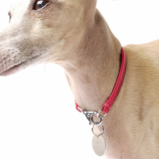 Petiquette Leather Dog ID Tag Collar - Leather House Collar
