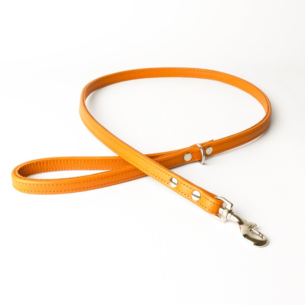 Leather Dog Leads - handmade to order