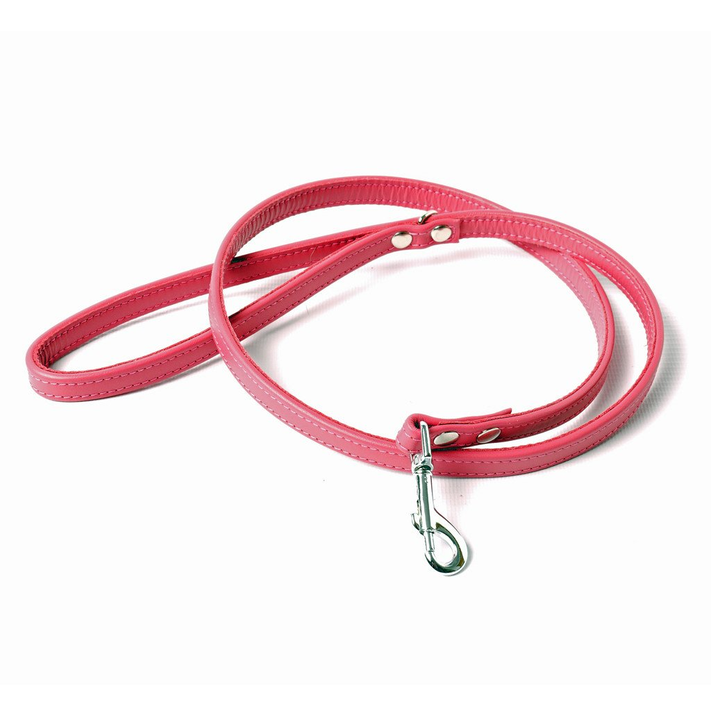 Petiquette Leather Dog Leads - made to order