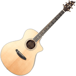 Breedlove Stage Exotic Concert CE