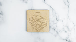 Unisphere engraved birch wood landmark coaster
