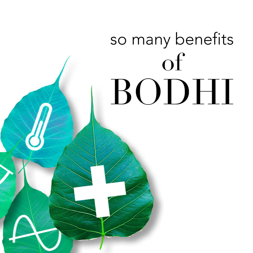 Benefits of Bodhi