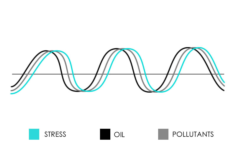 Graph showing balancing hormones to stress and pollutants