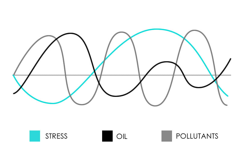Graph showing Unbalanced Hormones and Stress in Skin