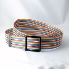 Rainbow Recycled Computer Ribbon Cable Belt