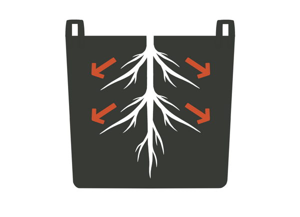 Diagram of plant roots growing in a GeoPot fabric pot