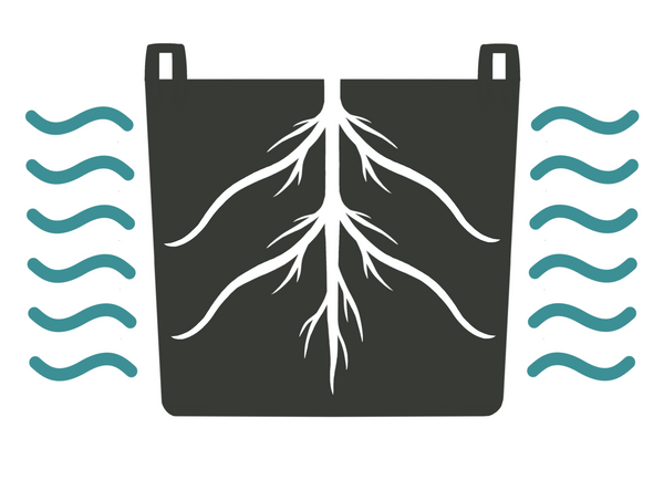Diagram of air root pruning with roots being exposed to dry air