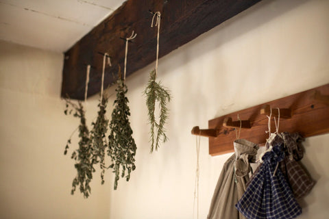 Herbs hanging in a kitchen to dry