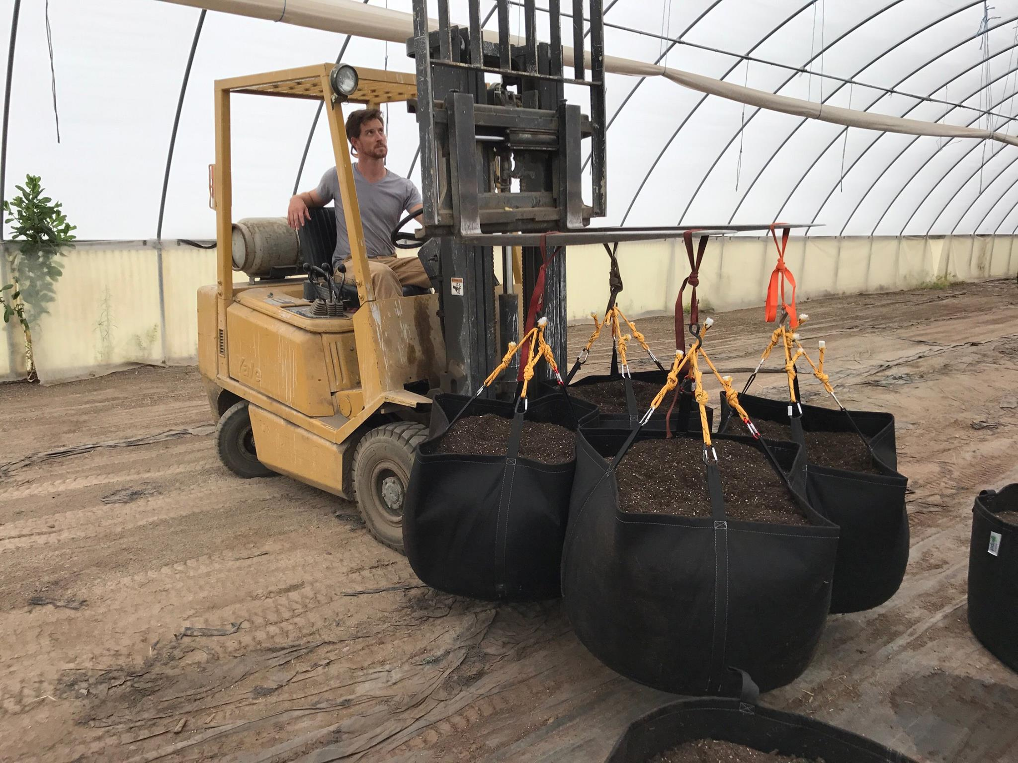 The durable and high quality construction of the Geopot Fabric Gardening Pots are demonstrated by being lifted full of soil with a fork lift.