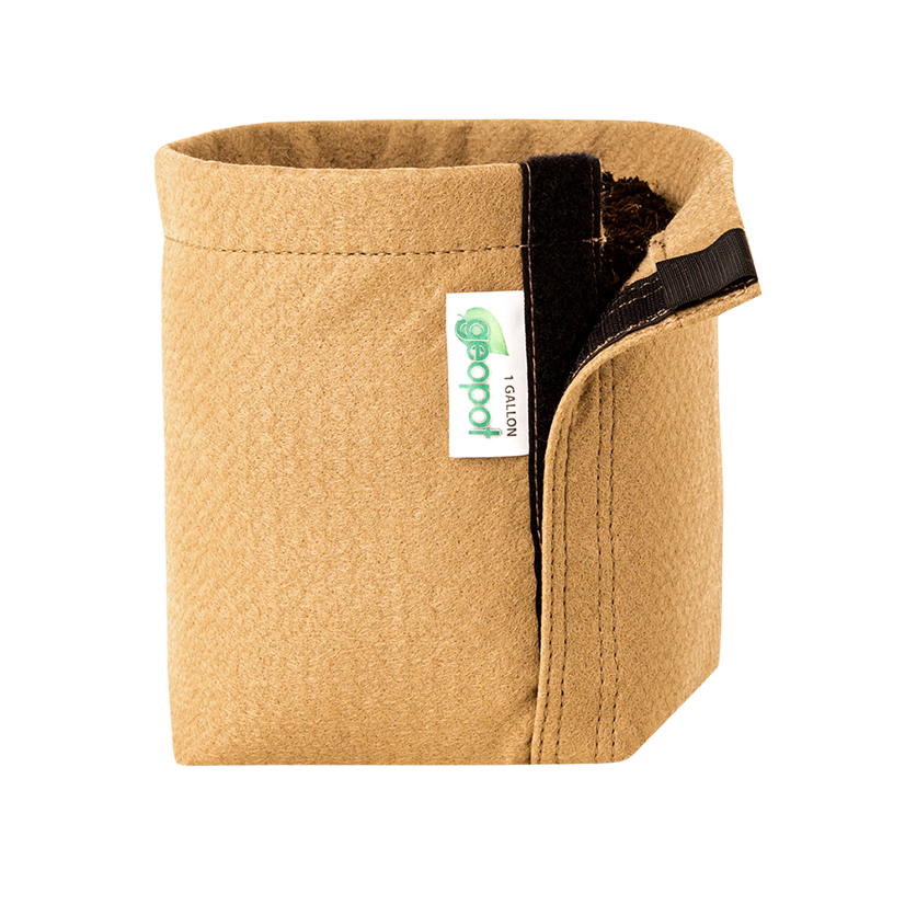 Geopot Fabric Transplanter Pot with Velcro Seam (Tan)