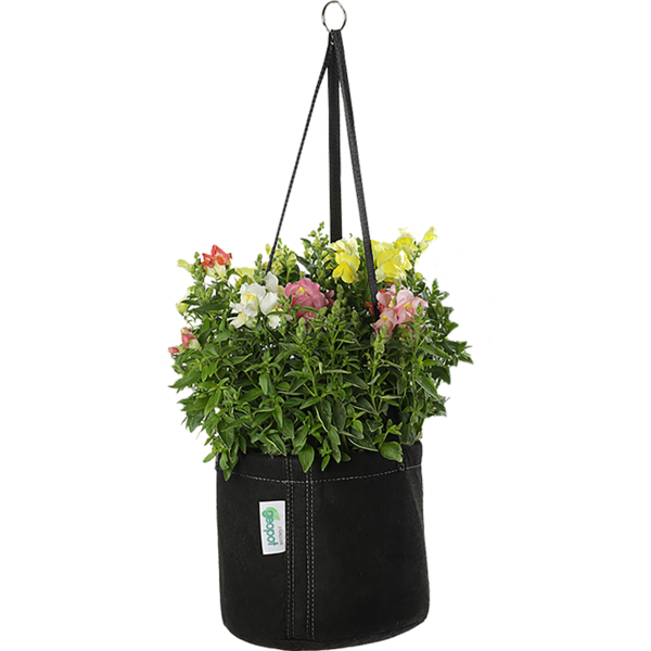 Hanging Basket - GeoPot Aerated Fabric Pots