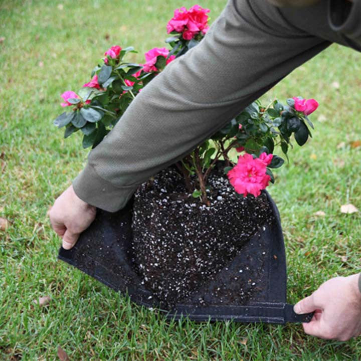 Geopot Fabric Transplanter Pot with Velcro Seam (Black) - GeoPot - Geopot.com