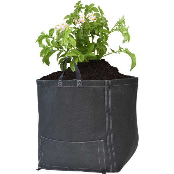 Square Bottom Potato Bag - GeoPot Aerated Fabric Pots