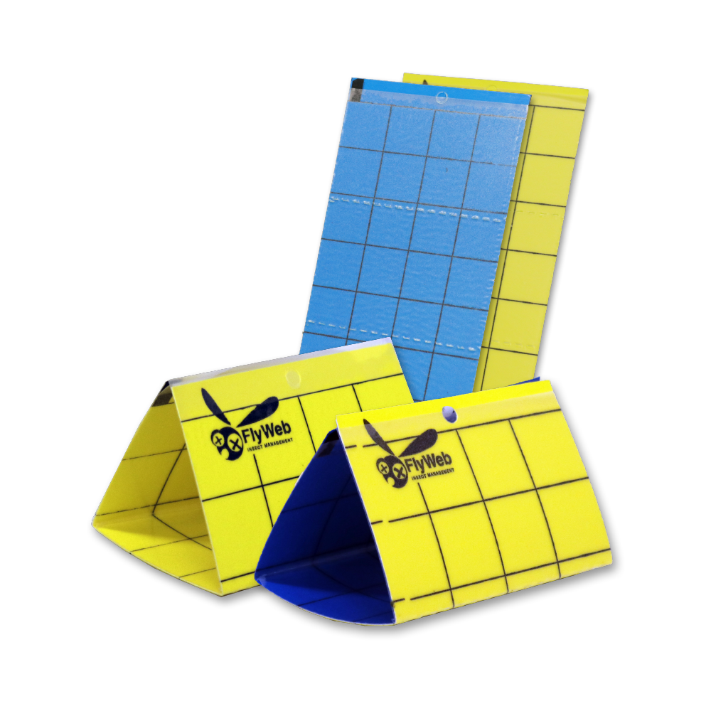 FlyWeb Insect Monitor Cards